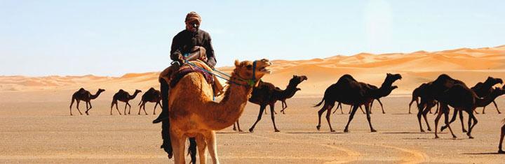 Beste reistijd Saoedi-Arabië