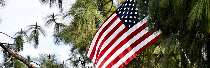 Amerika visum ESTA aanvragen
